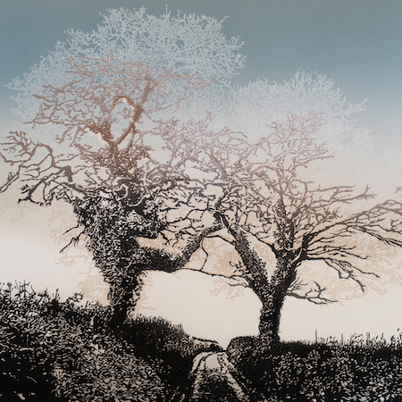 Two Trees - South Hams, Devon
